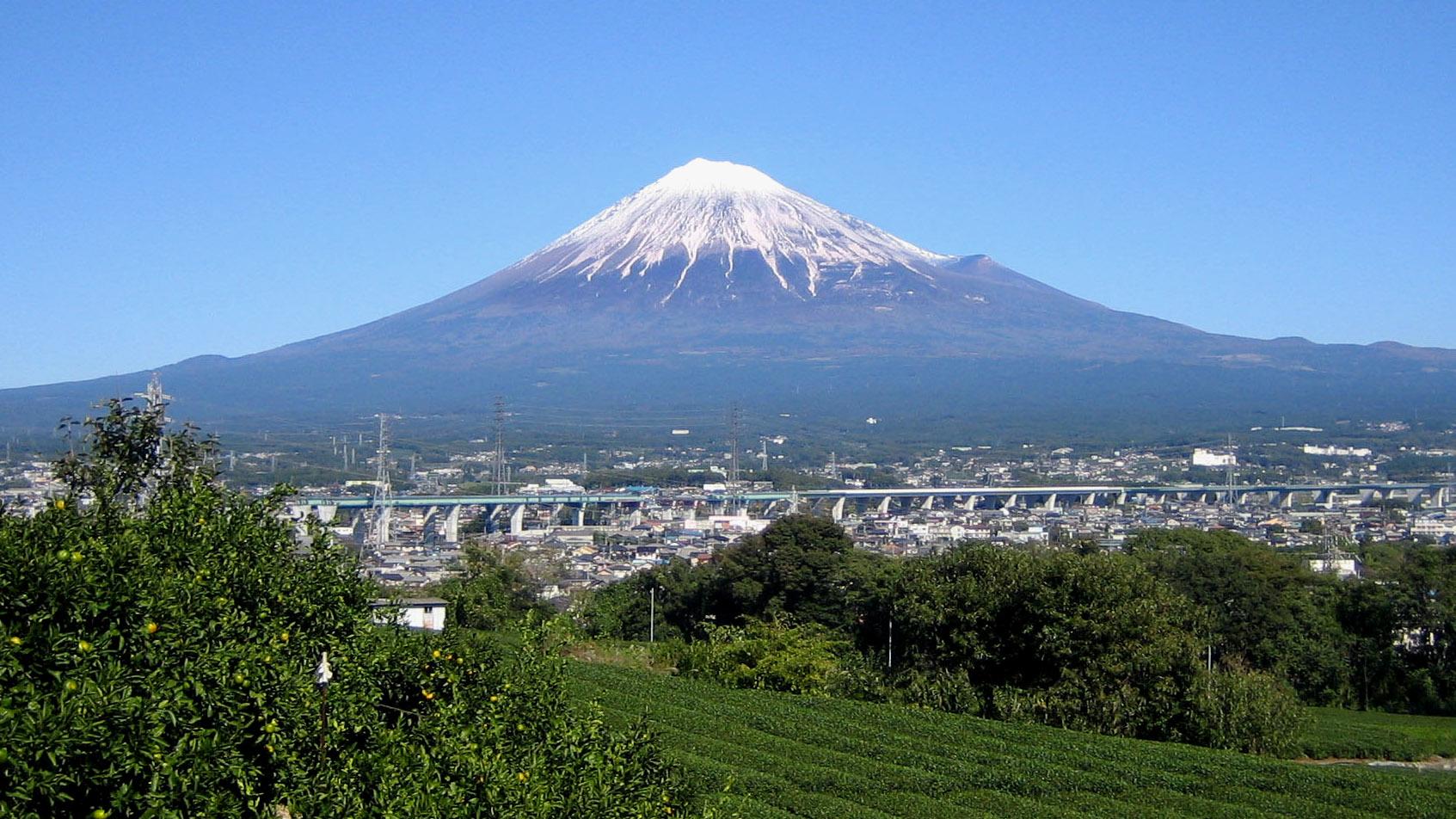 静岡県ポスティング